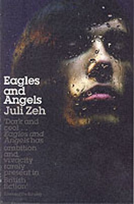 Eagles and angels 9781862076747 xxl