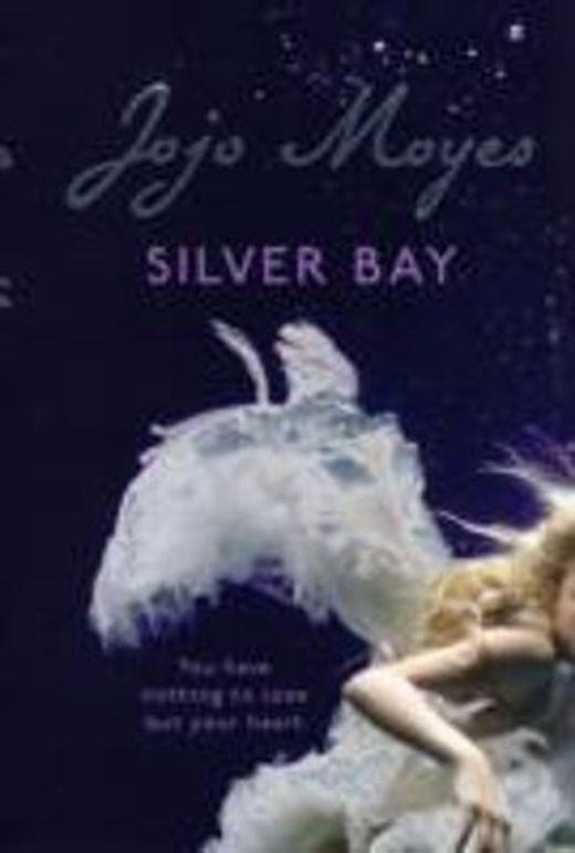 Silver bay 9780340895931 xxl