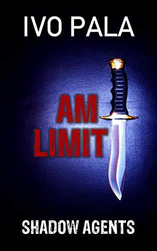 Shadow Agents: Am Limit